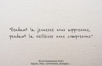 citation apprendre comprendre
