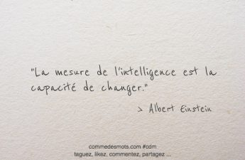 La mesure de l'intelligence