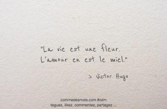 La vie est une fleur. L'amour en est le miel.