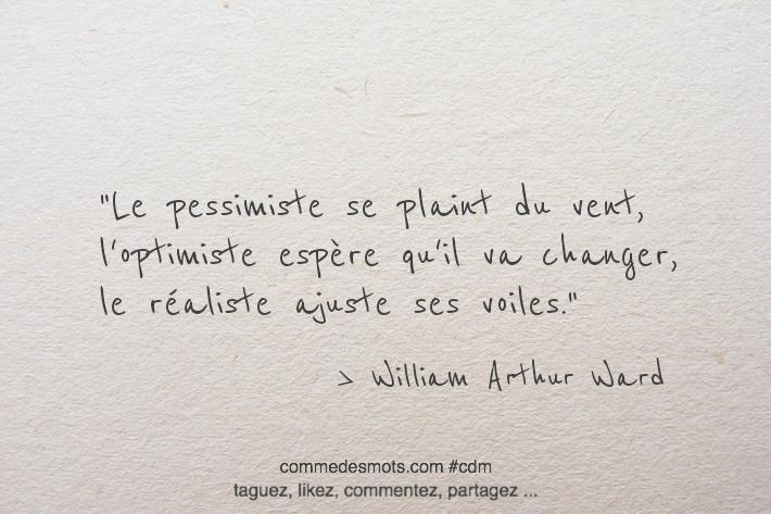 Le pessimiste se plaint du vent, l'optimiste espère qu'il va changer, le réaliste ajuste ses voiles.