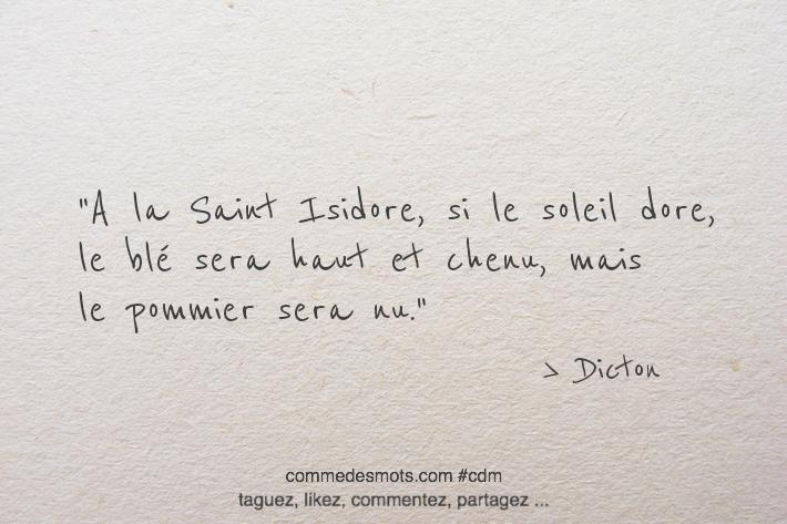 A la Saint Isidore, si le soleil dore, le blé sera haut et chenu, mais le pommier sera nu.
