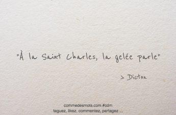 À la Saint Charles, la gelée parle