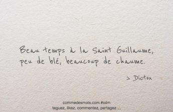 Beau temps à la Saint Guillaume, peu de blé, beaucoup de chaume.