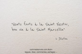Vents forts à la Saint Nestor, bon vin à la Saint Marcellin